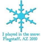 Flagstaff Snow 2010