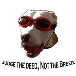 Breed Specific Legislation.