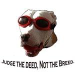 Breed Specific Legislation.