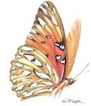 fritillary in flight