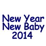 New Year New Baby 2014