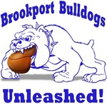 Brookport School