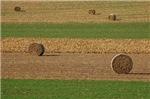 Hay Rounds