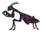 Praying Mantis Silhouette - multi color