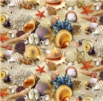Fancy Seashells