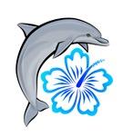Dolphin Hibiscus