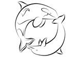 Dolphin/Orca Duality