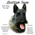 Scottish Terrier (Brindle)