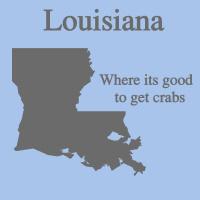 Louisiana state t-shirts