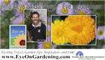 Eye on Gardening