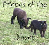 Friends of the Sheep