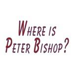 Fringe: Where is Peter Bishop?