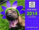 Our Pack 2014 Calendar