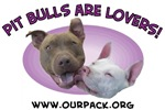 Pit Bulls Are Lovers!