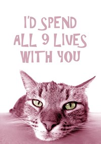 I'd Spend All 9 Lives With You