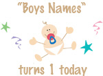 Turns 1 Today (brown - Boys)