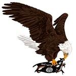 Eagle Crushes ISIS