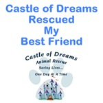 Castle of Dreams Rescued My Best Friend
