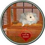 Hamster #3