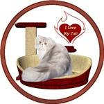 Cat #11