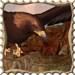 Flight of the Eagle - Close Up