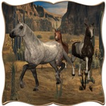 Southwest Horses