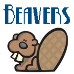 Cute Beaver Designs
