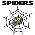 Cute & Silly Spider Designs