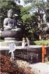 Budha's Meditation Garden