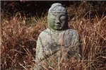 Stone Budha in the Grass