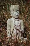 Budha Mediatating in the Grass