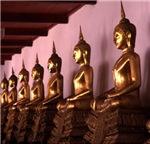 Row of Golden Meditating Budhas