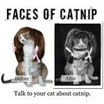 Faces of Catnip
