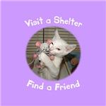 Visit a Shelter, Find a Friend