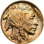 Indian Head Nickel on White