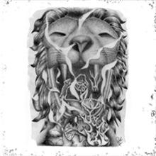 Lion Kokopelli Artwork Smoke 420 Stuff Gifts
