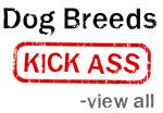 Dog Breeds Kick Ass