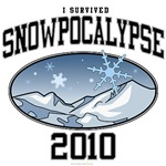 I Survived Snowpocalypse 2010