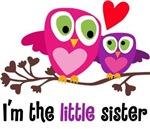 Little Sister Owl