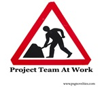 Project Team At Work