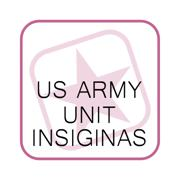 Army Unit Insignia's