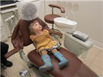 Lily Dentist