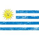 Vintage Uruguay Flag