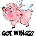 Got Wings?