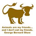 George Bernard Shaw T-shirt & Gift