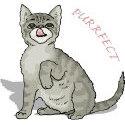 Purrfect Cat Apparels & Merchandise