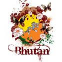 Butterfly Bhutan