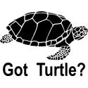 Got Turtle
