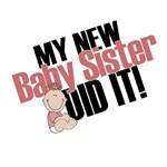 My New Baby Sister Did It