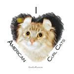 I (heart) American Curl Cats